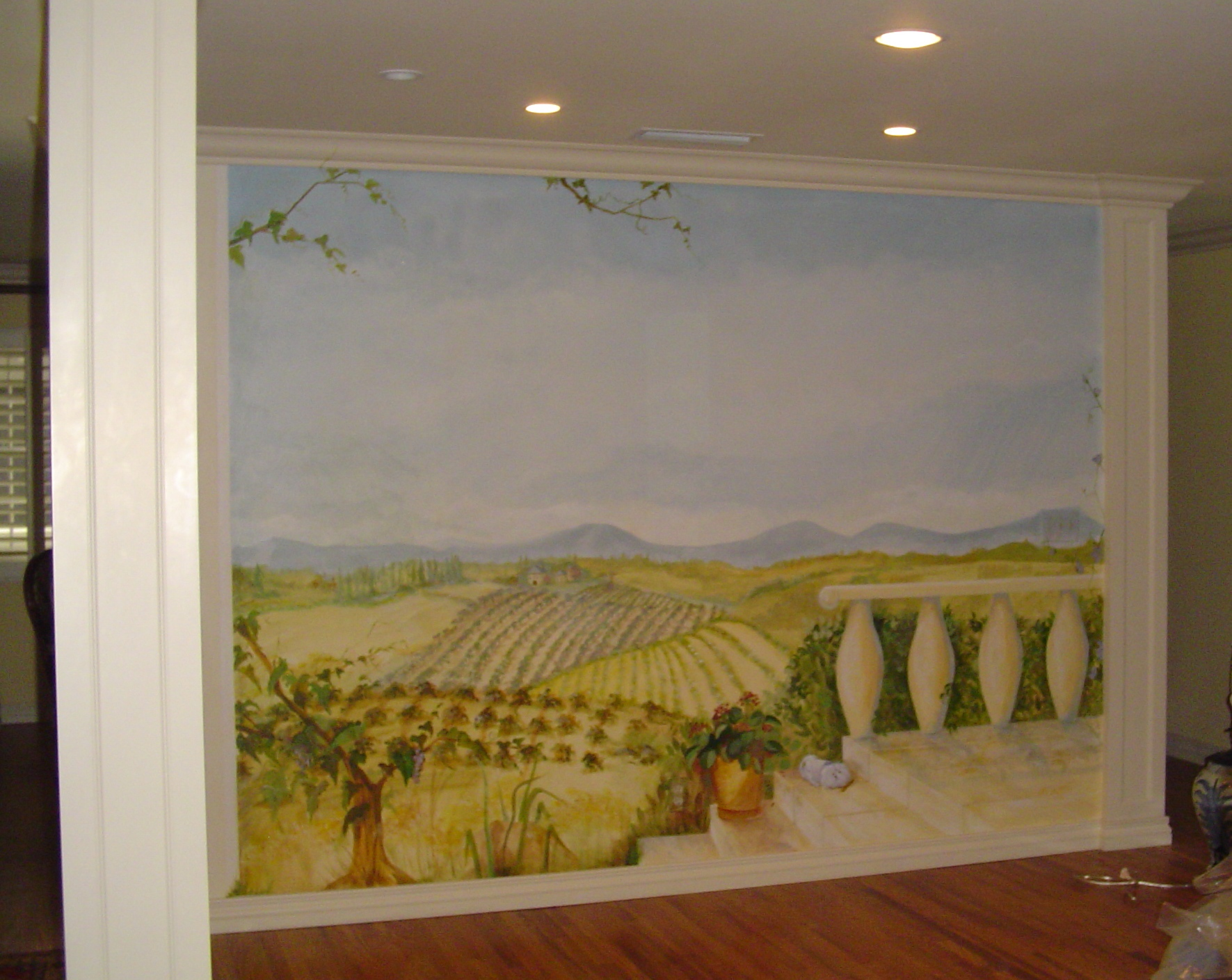 Murals and Faux Finishes